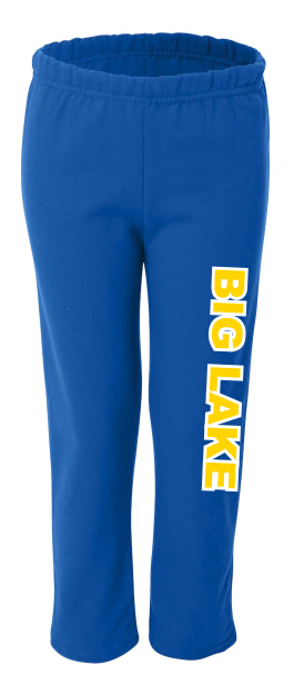 Adult Hornets Performance Pants