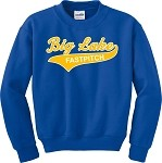 Heavy Blend Hornets Crew Neck Sweatshirt