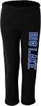 Ladies Hornets Performance Pants